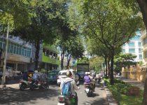Hình ảnh ký gửi nhà đất tại phường Đa Kao quận 1